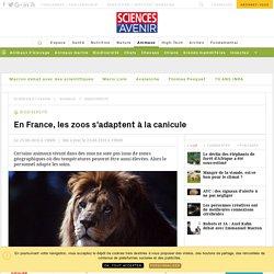 En France, les zoos s'adaptent à la canicule - Sciencesetavenir.fr