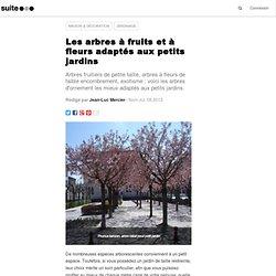 Les arbres à fruits et à fleurs adaptés aux petits jardins
