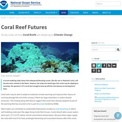 Are Coral Reefs Adapting to Moderate Climate Change?