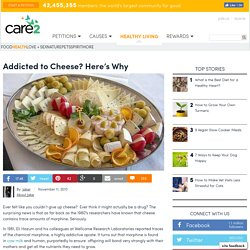 Addicted to Cheese? Here's Why