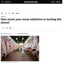 How much your meat addiction is hurting the planet