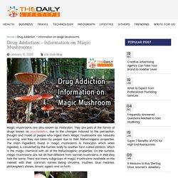Drug Addiction - Information on Magic Mushrooms