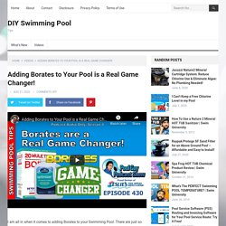 Adding Borates to Your Pool is a Real Game Changer!