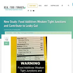 New Study: Food Additives Weaken Tight Junctions and Contribute to Leaky Gut