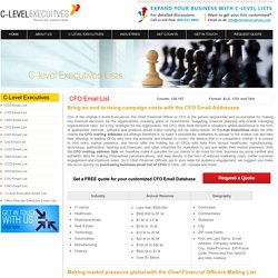 Chief Financial Officer Mailing List from C-Level Executives