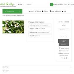 Adhatoda Vasica Natural & Ayurvedic Herbs Wholesale Supplier India