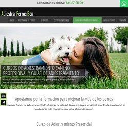 Cursos de Adiestramiento Canino Profesional – Adiestrar Perros