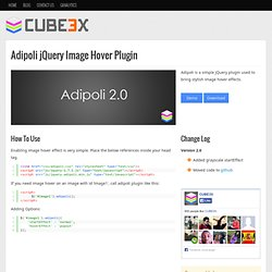 Adipoli jQuery Image Hover Effects