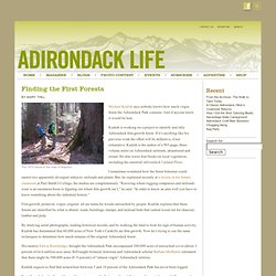 Adirondack Life Blog Archive » Finding the First Forests