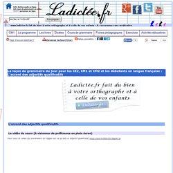 L'accord des adjectifs qualificatifs - Cours vidéo et exercices de français CE2, CM1, CM2