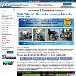 Adjustable Dog Wheelchair for Handicapped & Disabled Pets - Handicapped Pets