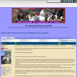 Dossier administratif concernant la détention d'ovins/caprin