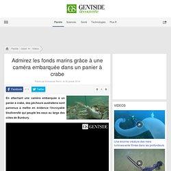 Admirez les fonds marins grâce à une caméra embarquée dans un panier à crabe
