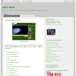 Canal adn-dna