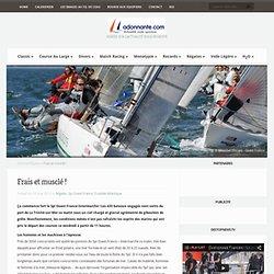 Surfez sur l'Actualité Voile Sportive, voile légère, match racing, course au large, monotype, ...