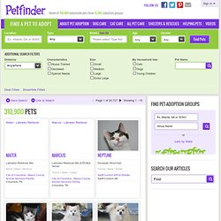 Pet Search Results: Adoptable Pets in Syracuse, NY: Petfinder
