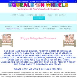 Piglet Adoption Process - Squeals on Wheels