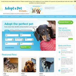Pet Adoption - Search dogs or cats near you. Adopt a Pet Today. Pictures of dogs and cats who need a home. Search by breed, age, size and color. Adopt a dog, Adopt a cat.