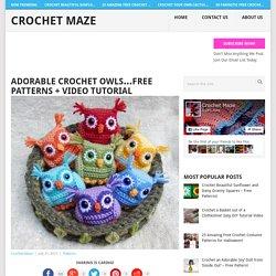 Adorable Crochet Owls...Free Patterns + Video Tutorial - Crochet Maze
