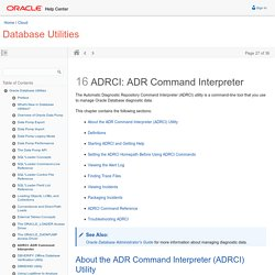 ADRCI: ADR Command Interpreter