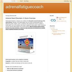 Adrenal Fatigue Diagnosis