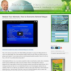 Restore Your Adrenals: How to Overcome Adrenal Fatigue — drhedberg.com
