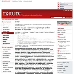 Insulin disrupts [beta]-adrenergic signalling to protein kinase A in adipocytes : Abstract : Nature