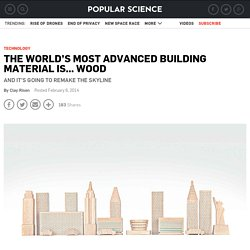 The World's Most Advanced Building Material Is... Wood