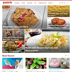 Pinterest Directory, Find Top Pinners, Popular Boards, and Trending Pins