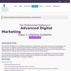 Advanced Digital,Marketing Diploma,Training Courses Amman Jordan