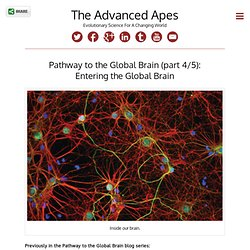 Pathway to the Global Brain (part 4/5): Entering the Global Brain