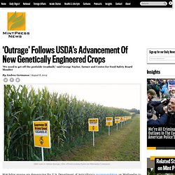 'Outrage' Follows USDA's Advancement Of New Genetically Engineered Crops