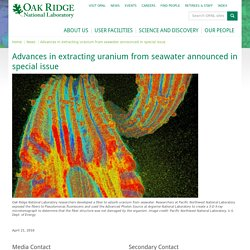Advances in extracting uranium from seawater announced in special issue