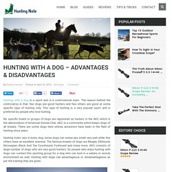 Hunting With A Dog – Advantages & Disadvantages - Hunting Note