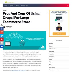 Advantages And Disadvantages Of Using Drupal For Ecommerce