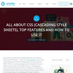All About CSS: History, Features, Advantages & Disadvantages