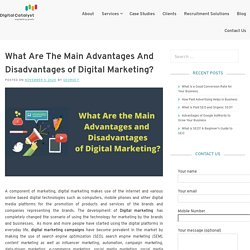 What Are the Main Advantages and Disadvantages of Digital Marketing – Digital Catalyst