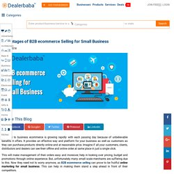 Advantages of B2B ecommerce Selling for Small Business