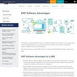 Advantages of ERP Software for Enterprises