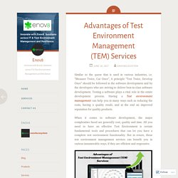 Advantages of Test Environment Management (TEM) Services