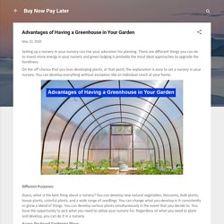 Advantages of Having a Greenhouse in Your Garden