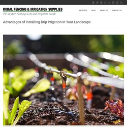 Advantages of Installing Drip Irrigation in Your Landscape