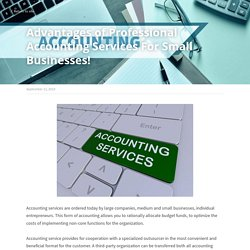 Advantages of Professional Accounting Services For Small Businesses!