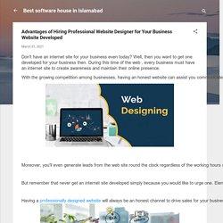 Advantages of Hiring Professional Website Designer for Your Business Website Developed