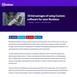 10 Advantages of using Custom software for your Business
