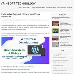 Major Advantages of Hiring a WordPress Developer - Vrinsoft Technology