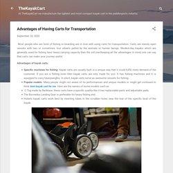 Advantages of Having Carts for Transportation