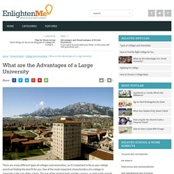 What are the Advantages of a Large University
