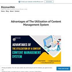 Advantages of The Utilization of Content Management System – BizzmanWeb