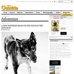 A New Portrait Book on the Dogs of the Iditarod